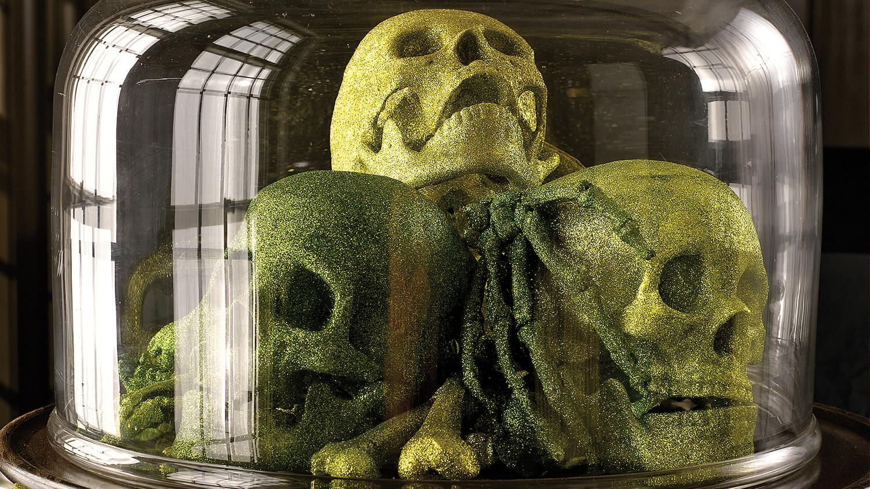 halloween skeleton and skull decorations martha stewart