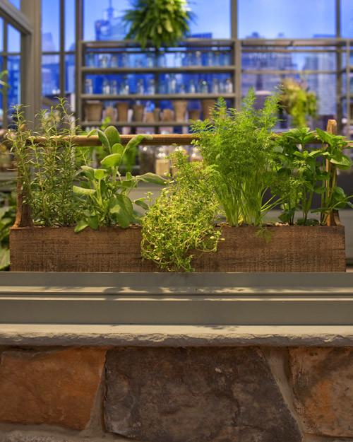 Container Herb Garden & Video | Martha Stewart