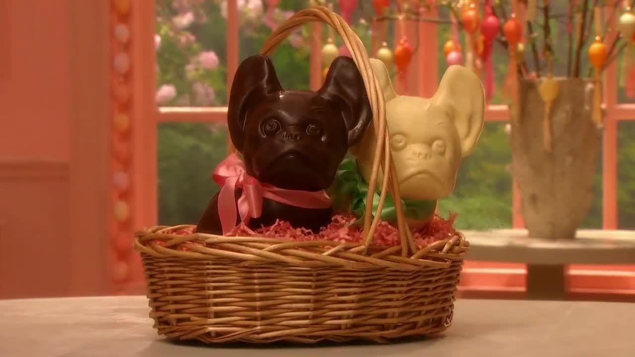 Video dog basket for martha martha stewart negle Image collections