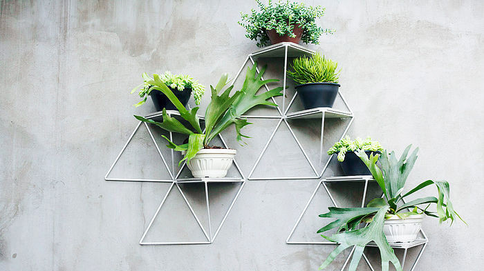 these geometric shelves turn your plants into a chic art installation - House Plants