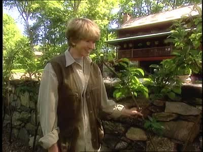 Video How To Grow An Espalier Martha Stewart