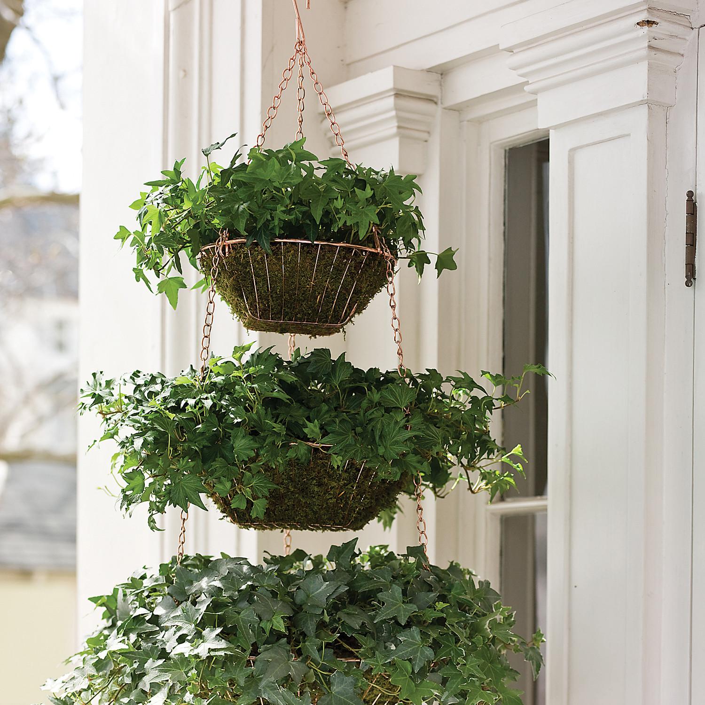 Hanging wire baskets planter martha stewart workwithnaturefo