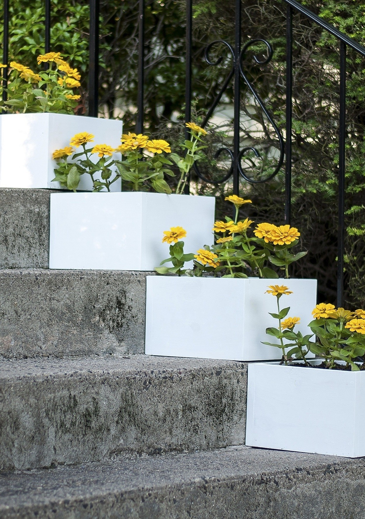 A Simple Vertical Garden How To Diy Stair Step Planters Martha Stewart