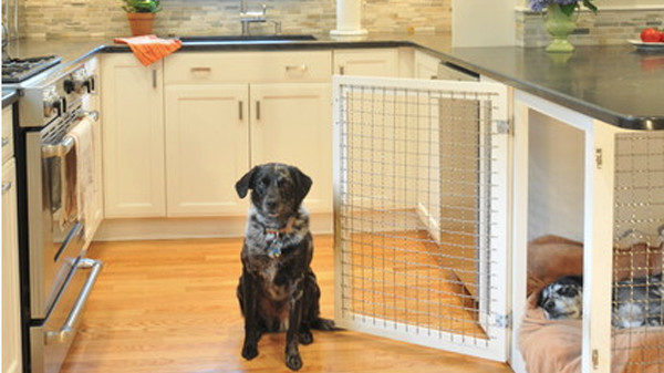 12 Indoor Dog Houses That We Think are Pawsitively Genius
