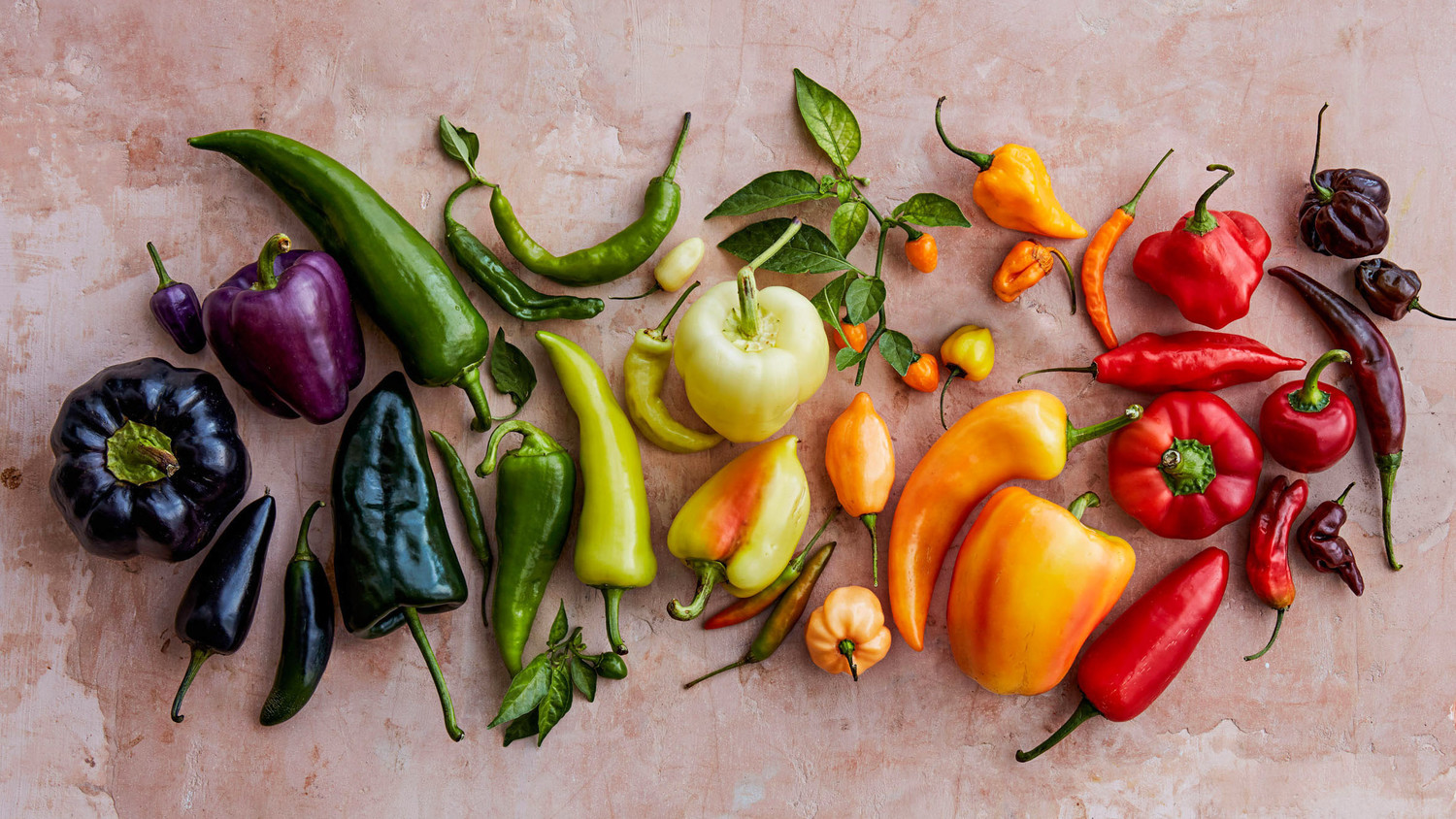 assorted colored peppers