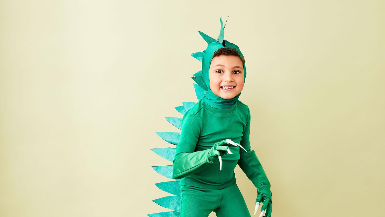 Dinosaur Costume Martha Stewart