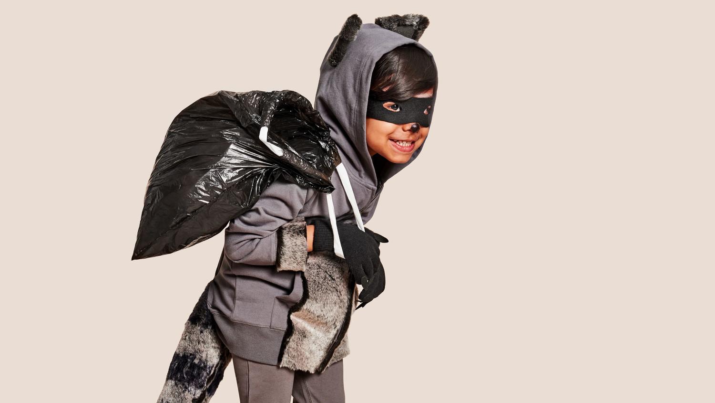 raccoon costume | martha stewart