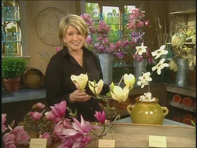 Video All About Magnolia Flowers Martha Stewart