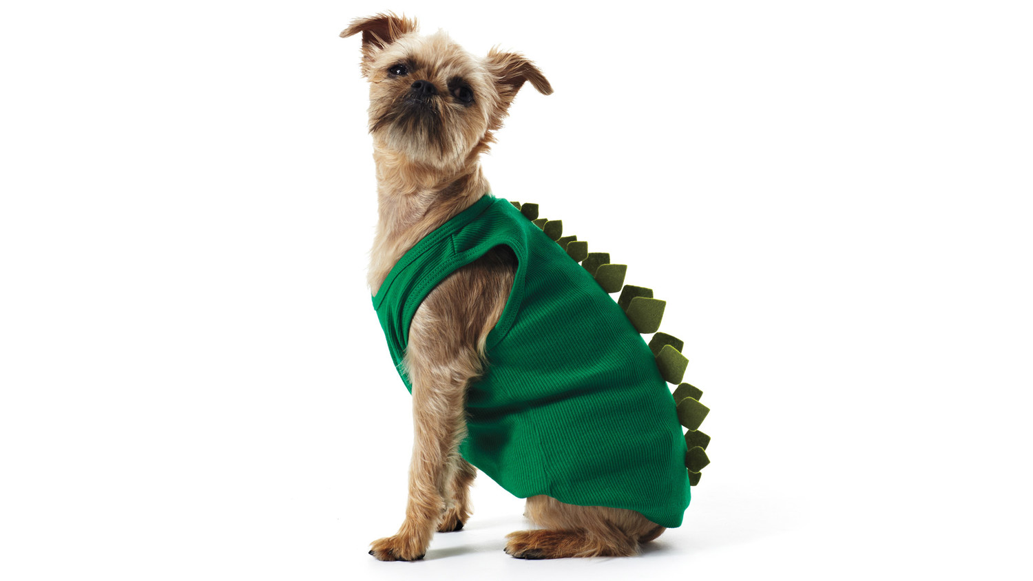 Doggie dino tank video martha stewart solutioingenieria Image collections