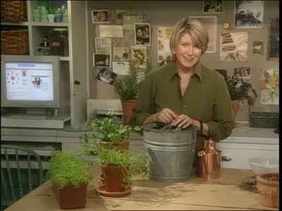Video Kitchen Window Herb Garden Martha Stewart