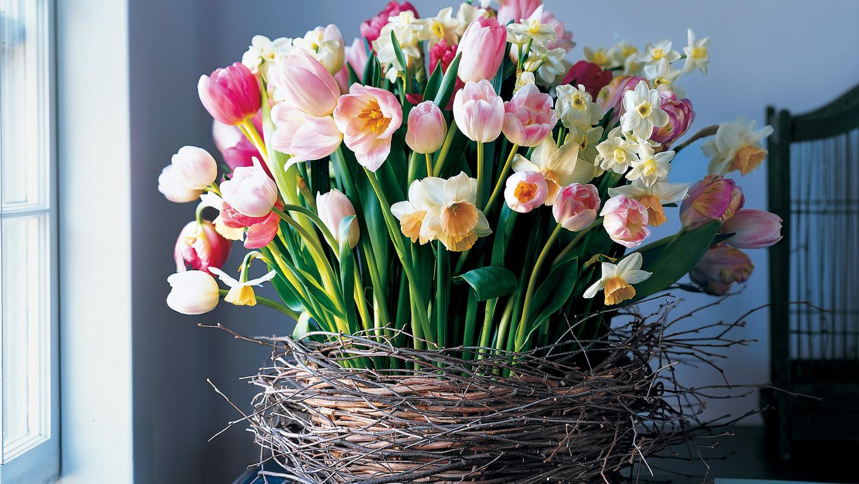 Spring Centerpieces Martha Stewart