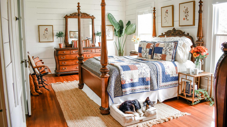 dog sleeping in rustic cottage bedroom