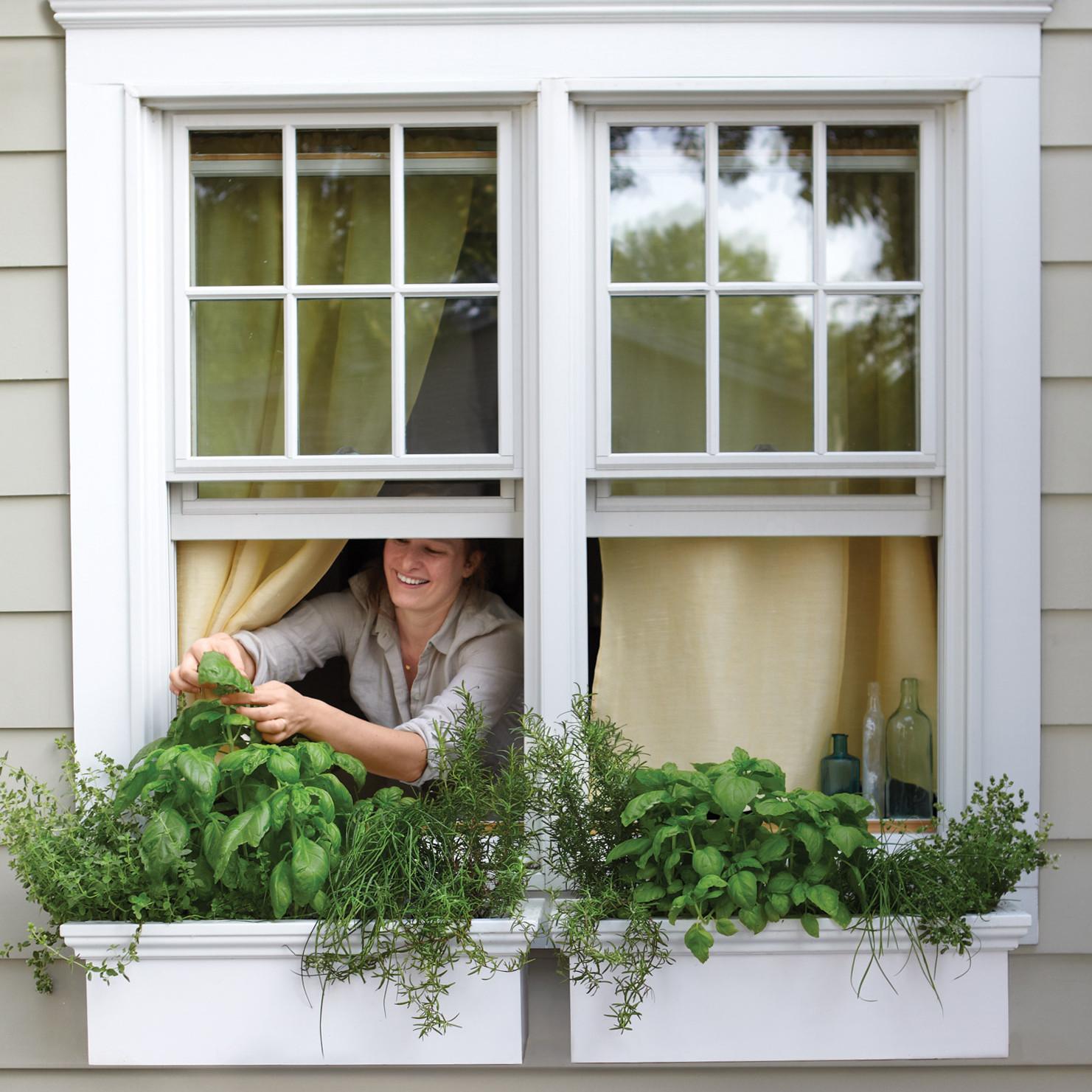 Small-Space Garden Ideas