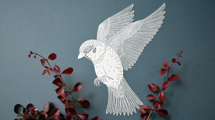 Learn About Paper Cutting From Pippa Dyrlaga Martha Stewart