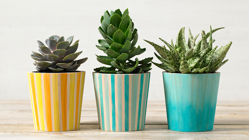 Watercolor-Painted Wooden Planters