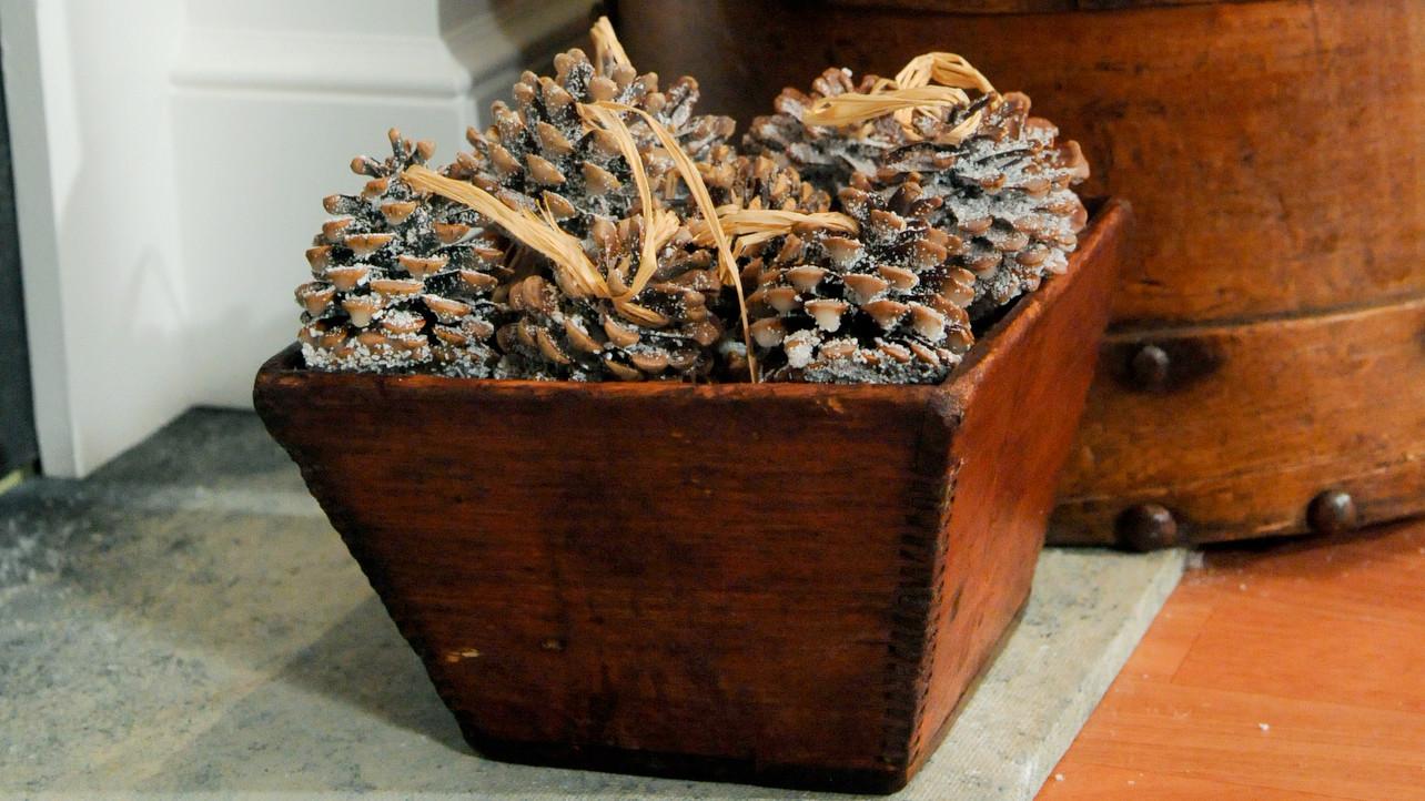 pinecone fire starter martha stewart