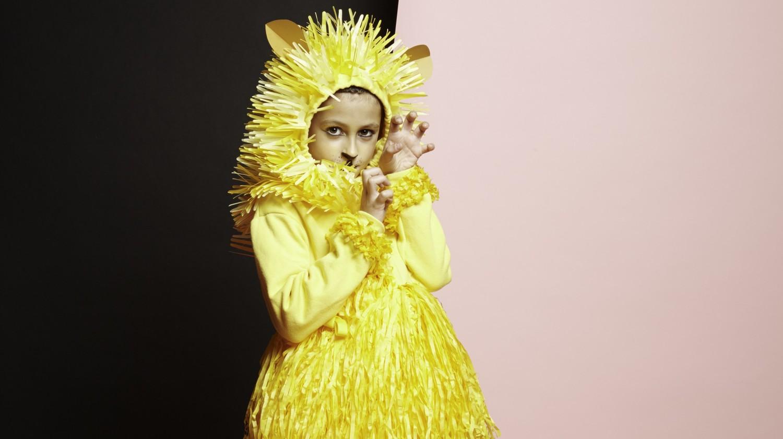 Fringe Paper Lion Costume