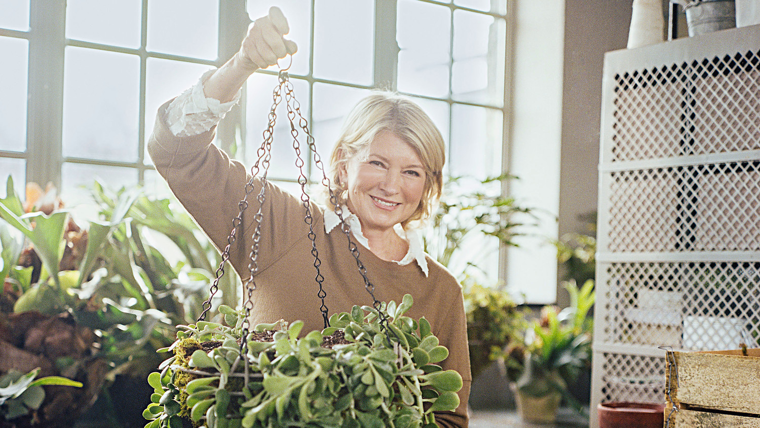 These Are the Best Indoor and Outdoor Hanging Plants for Your Home