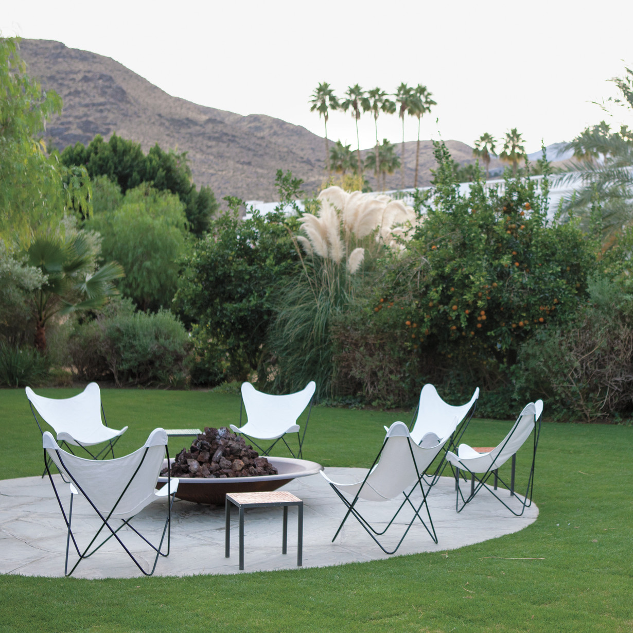 Spotlight On Palm Springs Style Outdoor Areas: Best Hotels: Gardens And Grounds