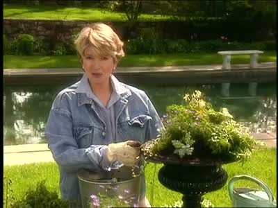 Video: Beautifying and Planting Outdoor Urns | Martha Stewart on plastic plant pots home depot, self watering planters home depot, garden bridges home depot, fireplace home depot, plastic boards home depot, wooden barrels at home depot, milk paint colors home depot, flower pot home depot, large outdoor planters home depot, disposable dumpsters home depot, herb garden home depot, pot hangers at home depot, outdoor urns home depot,
