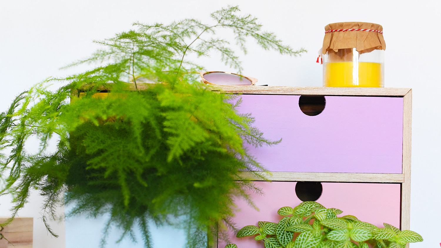 Chest of Drawers Planter