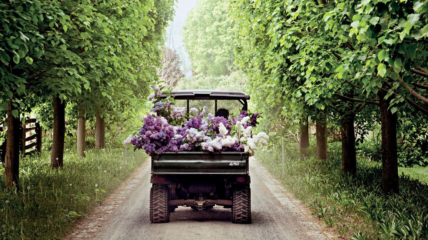 marthas-flowers-truck-lilacs-103269816