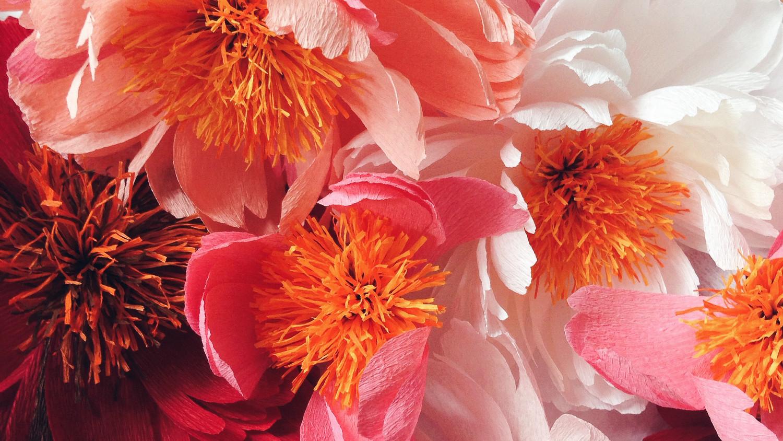 A Paper Flower Artist Shares Her Secret to Magical Blooms | Martha ...
