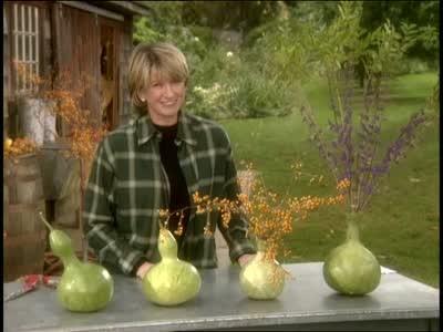 Video Martha Stewart Makes Bottle Gourd Vases Martha Stewart