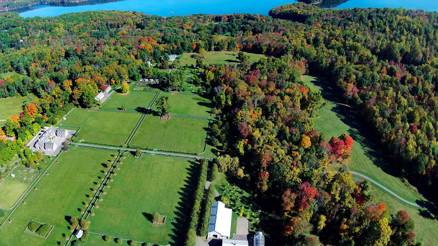 drone shot of marthas home in fall with changing leaves