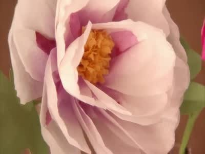 Video vibrant handmade flowers for all occasions martha stewart mightylinksfo