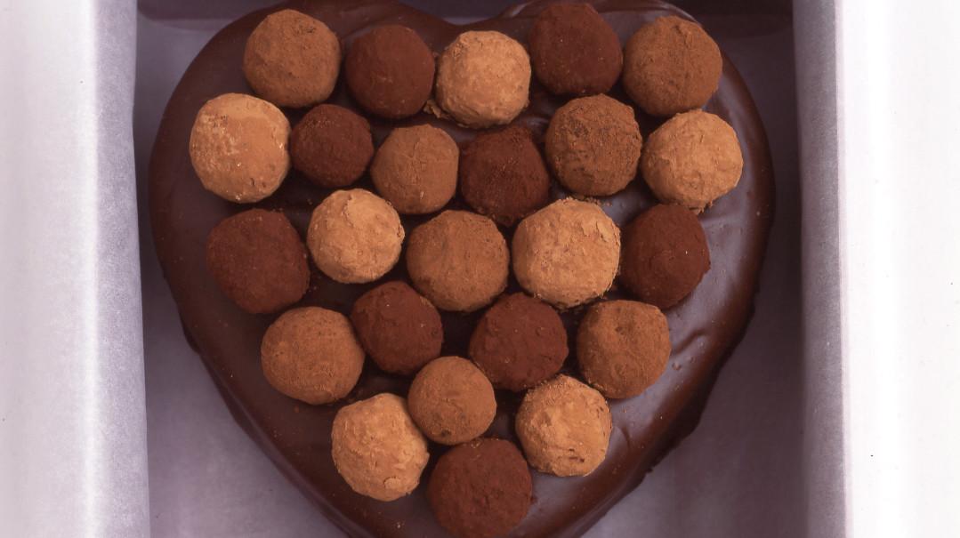 Martha Stewart Chocolate Truffle Cake