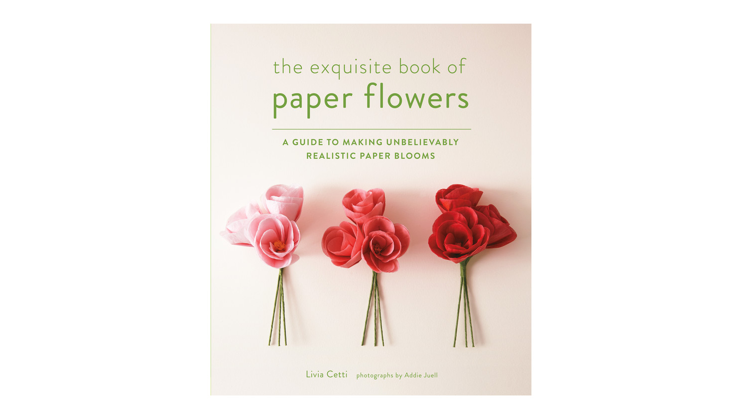 The Exquisite Book Of Paper Flowers Martha Stewart