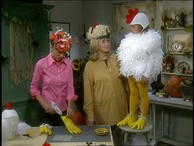 sc 1 st  Martha Stewart & Video: Martha Stewart Makes a Halloween Chicken Costume | Martha Stewart