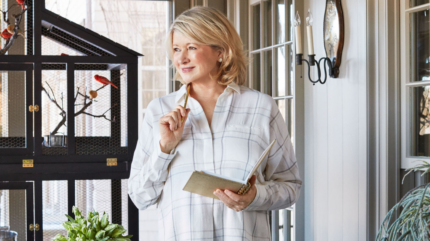 Martha Stewart's Businesses, Explained