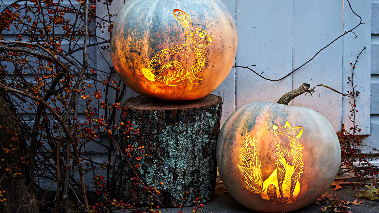Etched Fox and Bunny Pumpkins