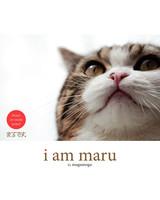 maru-cat-11.jpg
