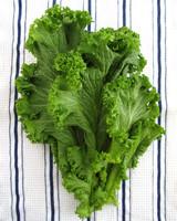 stock_images/mustard-greens.jpg