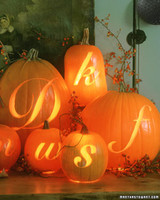 ft063_pumpkin06_m.jpg
