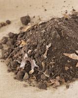 4117_031209_soil.jpg