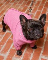 4121_031809_dogcoat.jpg