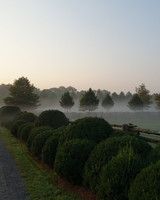morning-fog-farm-02.jpg