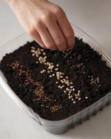 soil-002-mmld108046.jpg