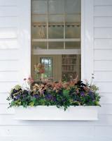window-box-ml805s05.jpg