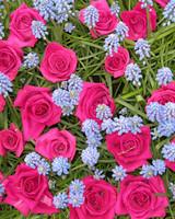 garden_contest_49221.jpg
