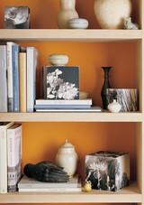 orange-bookcase-1016.jpg (skyword:349135)
