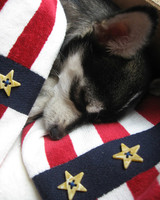 p_patriotic_09_91160.jpg