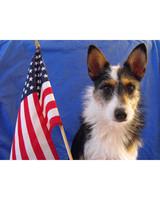 p_patriotic_09_91819.jpg