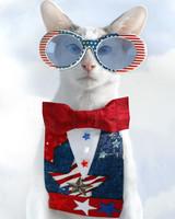 p_patriotic_09_93771.jpg
