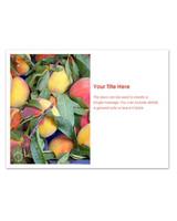 pingg-summer-peaches.jpg
