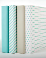 blue lined polka dot binders